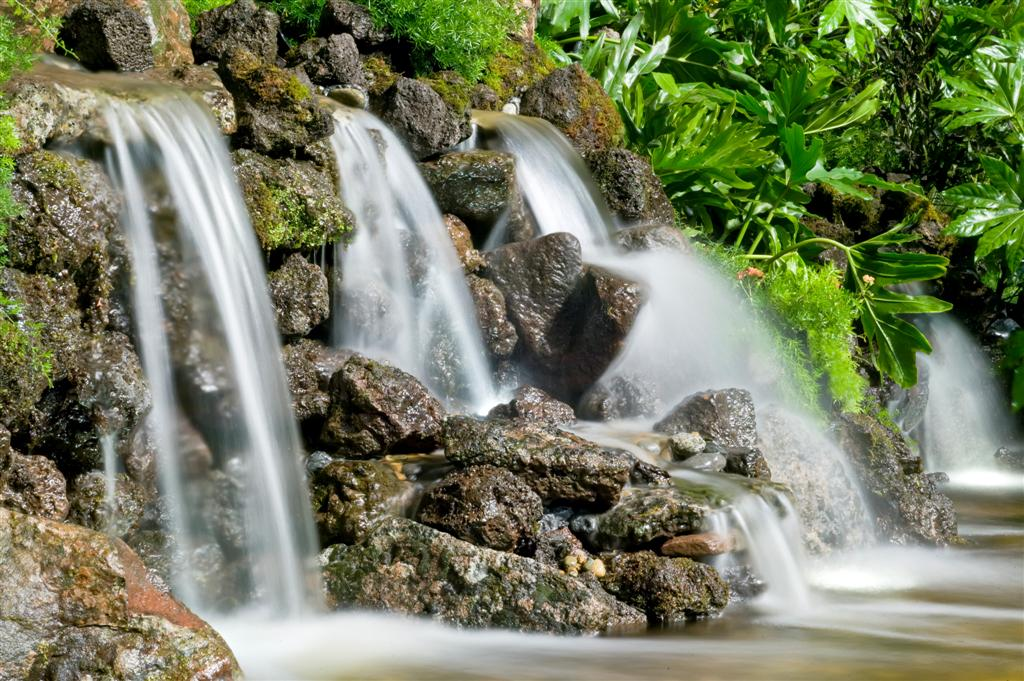 Bay Area Pond And Waterfall Supply